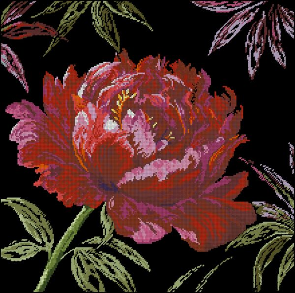Anchor 5678000-01007 Well Worth Waiting For-Peony