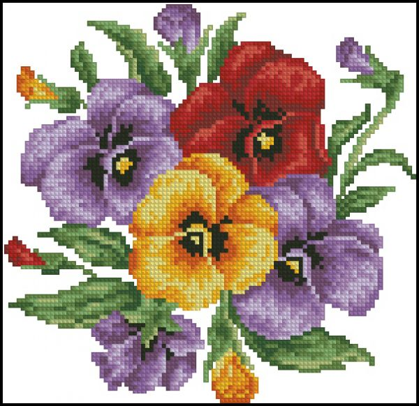 Cross House Pansy