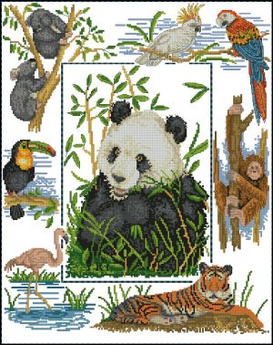 Anchor PSC37 Wildlife of the World Sampler